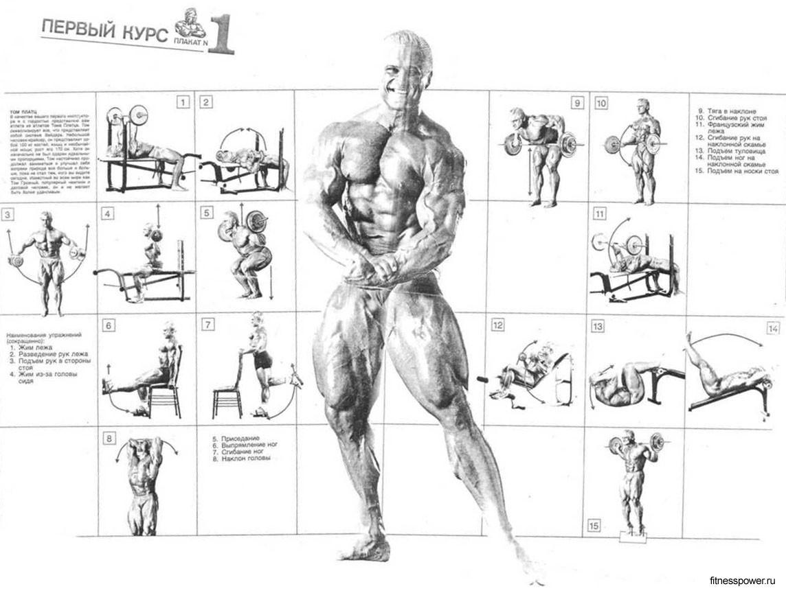 Weider ultimate body 3