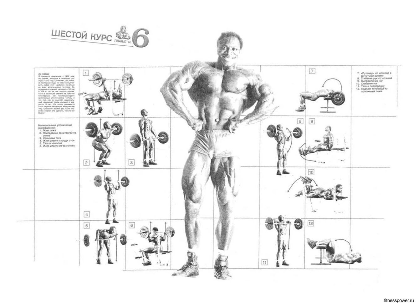 10 best images of gym workout chart weider home gym exercise