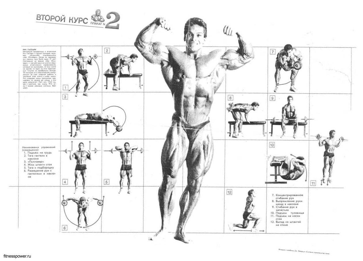 боксер становился упражнения в картинках по бодибилдингу и фитнесу сколько людей поет