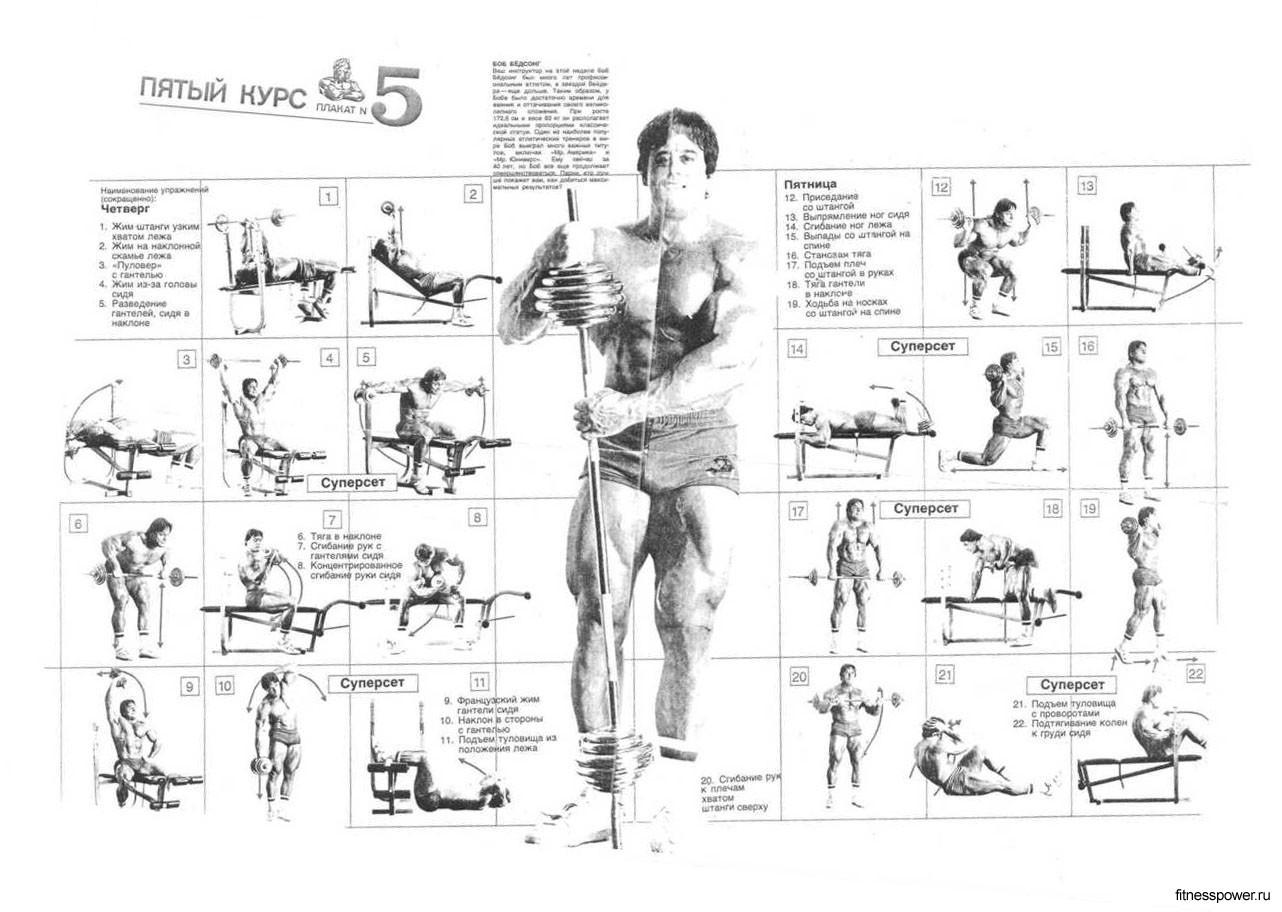 Упражнения со штангой в домашних условиях фото фото являются