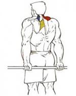Все упражнения на спину